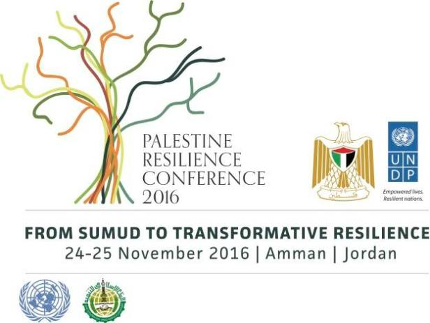 undp-resilience